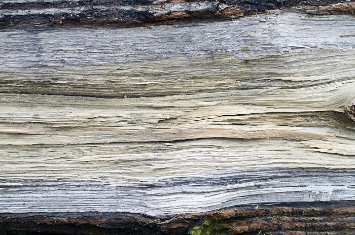 Kotly na drevo sa využívajú v zime aj v lete